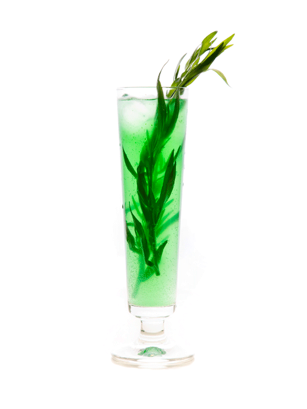 Тархун — рецепт напитка в домашних условиях с сиропом