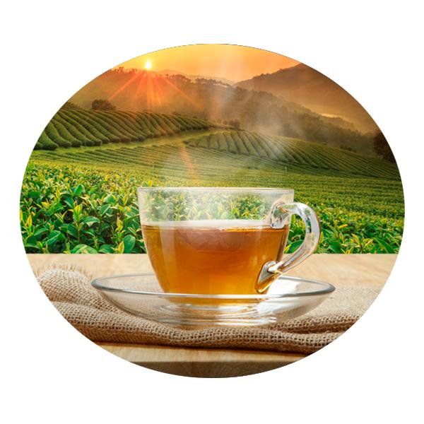 Чайные сиропы купить | Магазин Миксомания